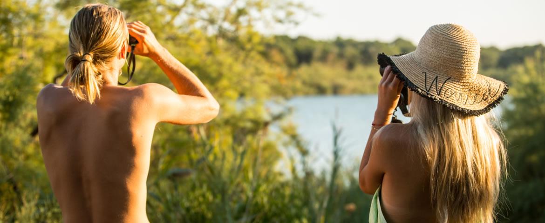 bagheera observation oiseaux naturiste