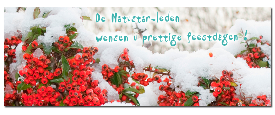 www.natustar.com/newsletter/20121224/index_nl.html